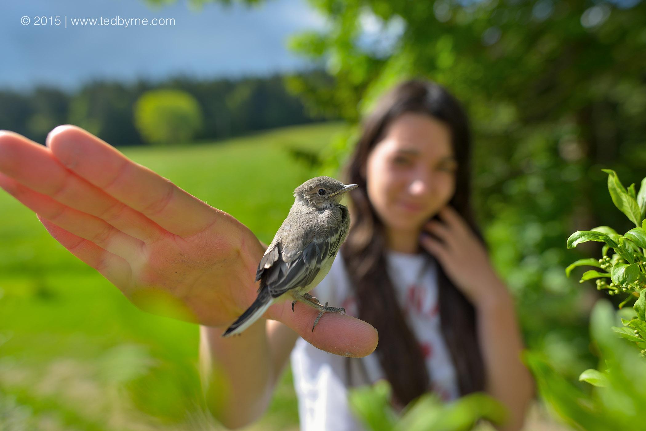 Young girl releasing baby bird