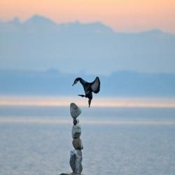 Touchdown – Lac de Neuchâtel, Switzerland