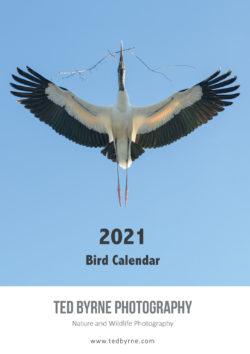 2021 Bird Calendar Cover
