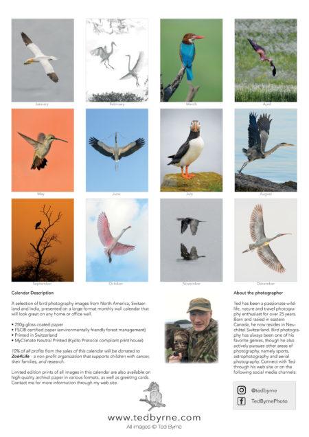 2021 Bird Calendar Impressum